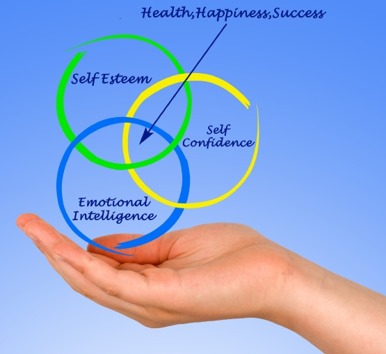 Emotional and Social Intelligence Workshop
