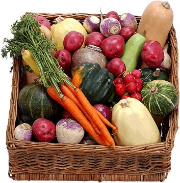 Vegetarian Living - Energize the Soul and Nourish the Body