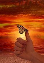 (Evento online) Tempo atual: oportunidade para uma rápida ascensão espiritual