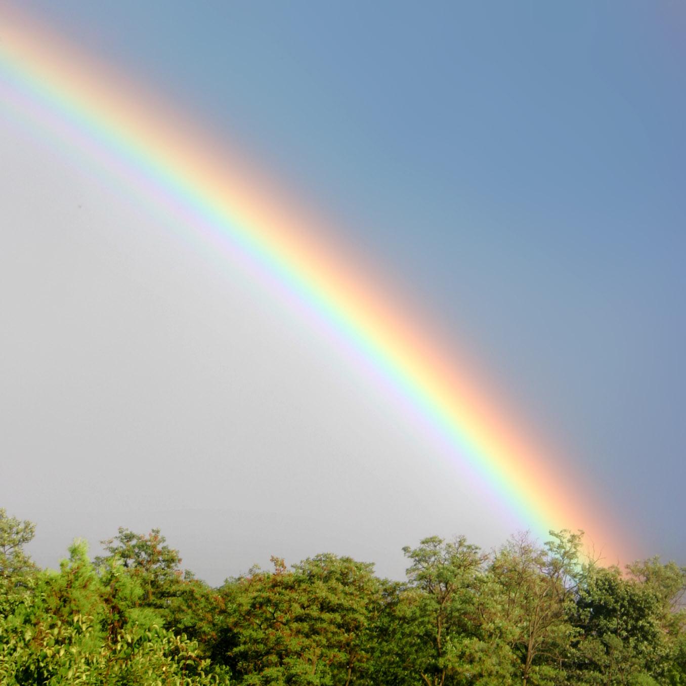 rainbow in sheffield