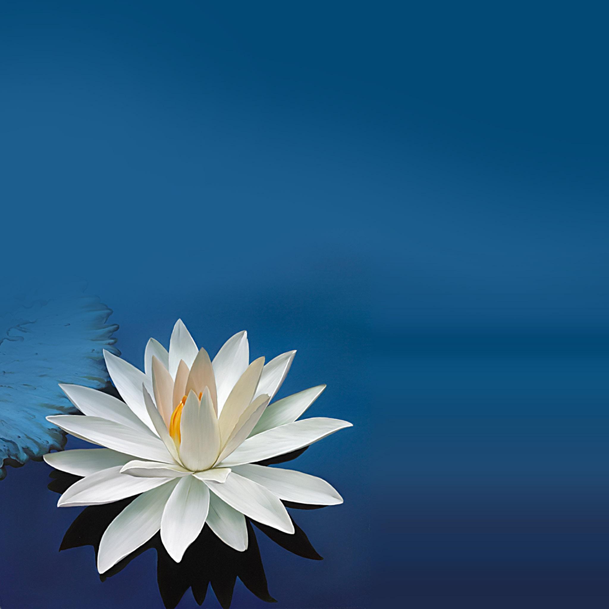 TAMPERE: Meditaatiotunti