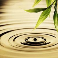 Meditación: EL LABORATORIO INTERIOR