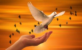 Уроки самоосознания и практической духовной мудрости
