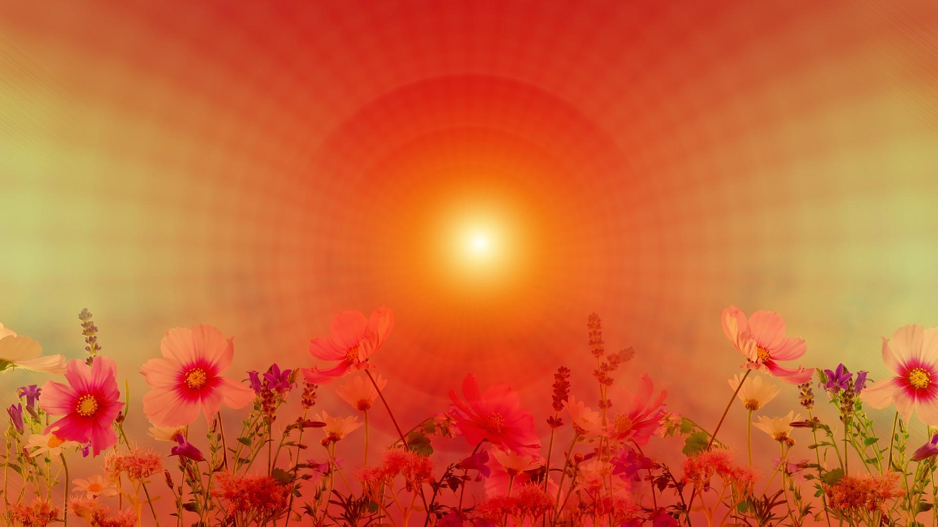 TURKU: Raja Jooga I -meditaatiokurssi